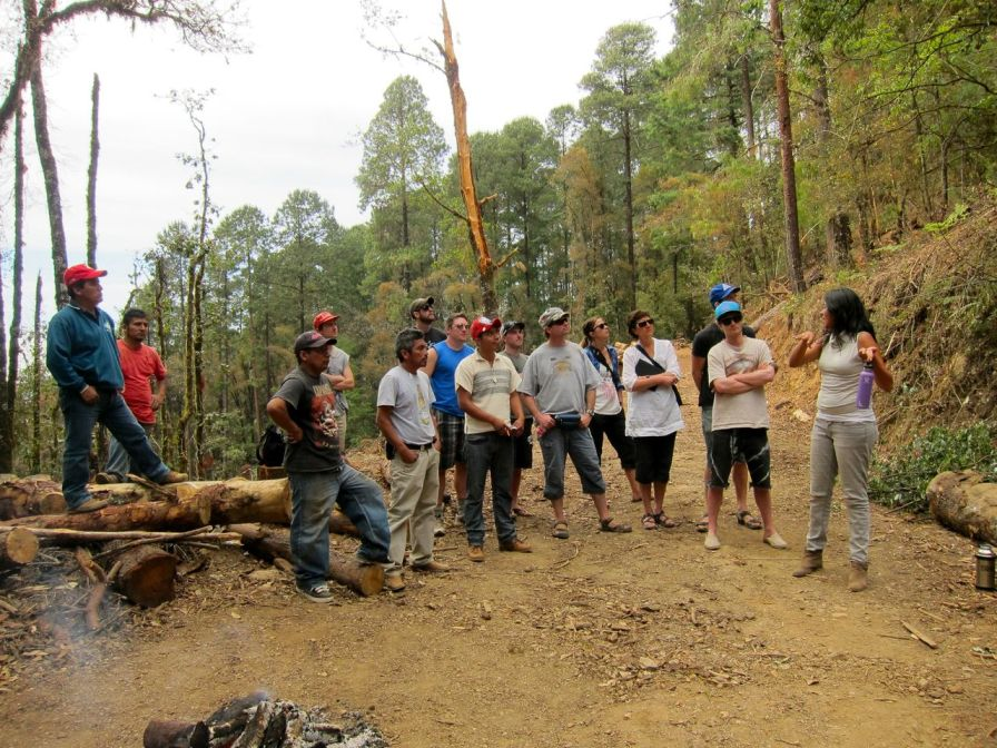 Selkirk Forestry Students Learn New Approaches in Mexico Photo