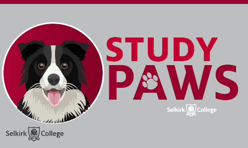 Study Paws for Stress Relief