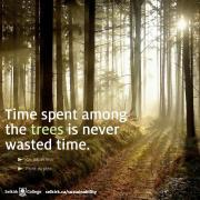 Time with trees is never wasted