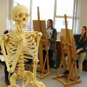 First year DANM students study human/animal proportions in an Art Fundamentals class.
