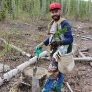 Before enrolling at Selkirk College, student Colby Bedford spent five summers planting trees.