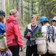 The outdoor classroom was a great opportunity for Forest Technology Program instructor Carol Andrews (middle) to emphasize the importance of proper procedure.